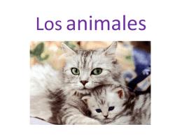 diapositivas. ANIMALES Y FAMILIAS