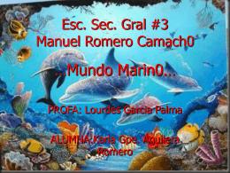 Esc. Sec. Gral #3 Manuel Romero Camach0 …Mundo marin0…