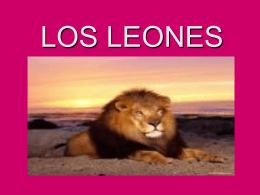LOS LEONES - pluritextos