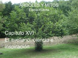 avellano - Árboles y mitos