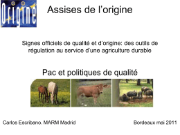 Assisses de l`origine - Assises de l`Origine