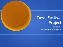 Town Festival Project