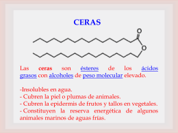 Ciclo de Krebs - quimicabiologicaunsl