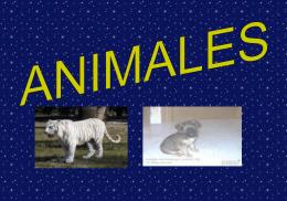 animales LUCIA - Este es el wiki de mi colegio