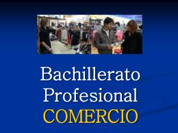 BACCALAUREAT PROFESSIONNEL COMMERCE