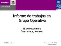 Informe-GO