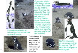 ¡Los pinguinos hacen un ruido muy fuerte como una sirena de barco!