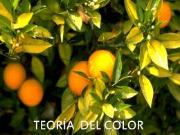 colores intermedios - Sra. Torres Anderson