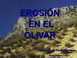 EROSIÓN EN EL OLIVAR