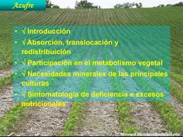 Metabolismo Azufre - Nutricao de Plantas