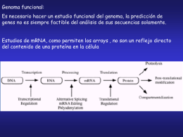 teorica_genomica_y_proteomica_2