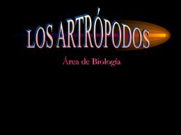 artropodos1 (863232)