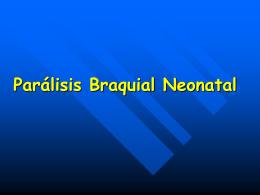 Parálisis Braquial Neonatal