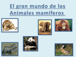 Presentación mamiferos webquest