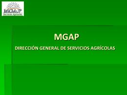 Presentación DGSA
