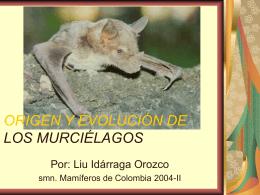 ORIGEN Y EVOLUCIÓN DE LOS MURCIÉLAGOS