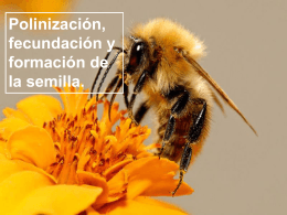 Polinizacion, fecundación y formación de la semilla