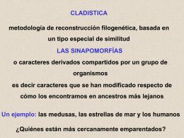 cladistica