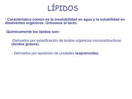 LÍPIDOS - HIBIO-GEO