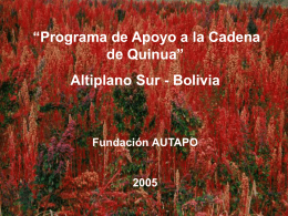 Altiplano Sur
