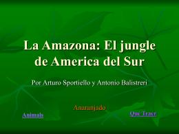La Amazona: El jungle de America del Sur