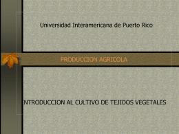 Introduccion al Culltivo de Tejido Vegetal