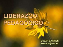 Liderazgo Pedaggico - mipracticacecarense2010