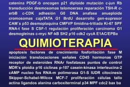 Tema 2 Principios de Quimioterapia