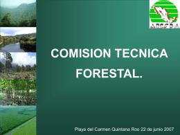 Comisión Técnica Forestal