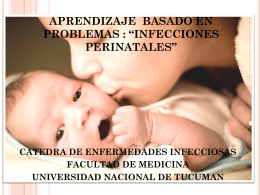 """aprendizaje basado en problemas : """"infecciones perinatales"""""""