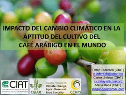 Impacto del cambio climático en la aptitud del cultivo del café