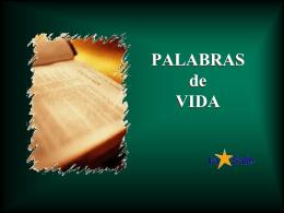 Domingo XXXIII A - Alianza en Jesús por María