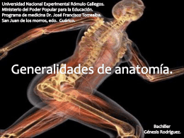 generalidades de anatomía (903898)