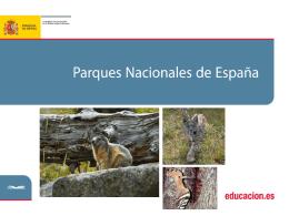 Diapositiva 1 - Ministerio de Educación, Cultura y Deporte