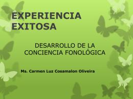 experiencia-exitosa
