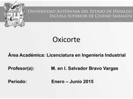 Sistemas_de_Manufactura_Oxicorte (Tamaño: 929.42K)