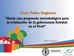 Evaluacion de la Gobernanza Forestal en el Perú