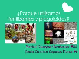 ¿Porque utilizamos fertilizantes y plaguicidas?