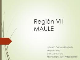 Maule - Colegio Laico Valdivia