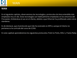 WAN - Cisco CCNA Exploration