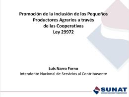 presentacion_sunat_ppt_ley_29972