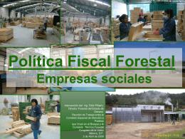 Intervención Ing. Félix Piñiero, Director Forestal del Estado