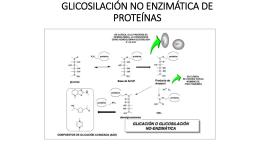 GLICOSILACIÓN NO ENZIMÁTICA DE PROTEÍNAS