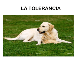 la tolerancia - CADAVIDTOLERA