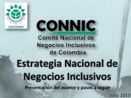 FINAL Presentacion Julio 2010 Estrategia Nacional NI