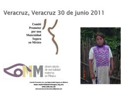 Comité Nacional (CPMS) - Maternidad sin riesgos