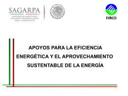 Apoyos para la Eficiencia Energética y el