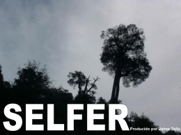 SELFER - UMCE - Medios Educativos