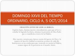 DOMINGO XXVII DEL TIEMPO ORDINARIO, CICLO A, 5 OCT/2014