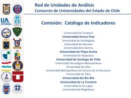 Reduai Indicadores version 2013 - Sistema de Gestión Institucional